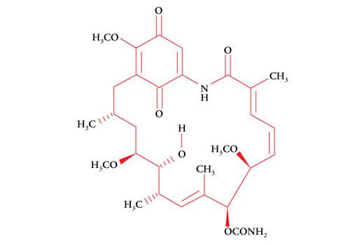 Chemical Modulators - Geldanamycin - 600 µg #9843