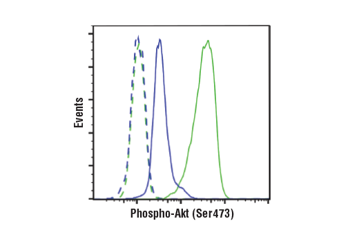 Flow Cytometry Image 1: Phospho-Akt (Ser473) (D9E) XP® Rabbit mAb