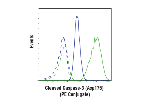 Flow Cytometry Image 1: Cleaved Caspase-3 (Asp175) (D3E9) Rabbit mAb (PE Conjugate)