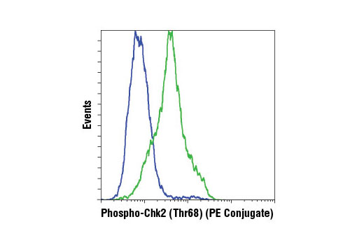 Flow cytometric analysis of HeLa cells, untreated (blue) or UV-treated (green), using Phospho-Chk2 (Thr68) (C13C1) Rabbit mAb (PE Conjugate).
