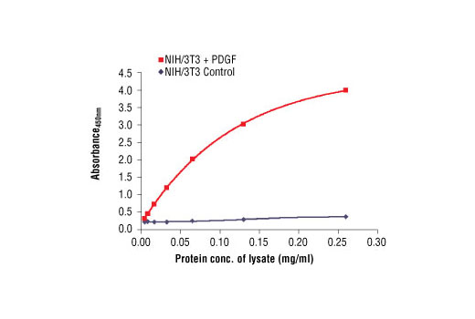 The relationship between lysate protein concentration from untreated and PDGF-treated NIH/3T3 cells and the absorbance at 450 nm using PathScan Phospho-Akt1 (Ser473) Sandwich ELISA Antibody Pair #7143 is shown. After overnight starvation, NIH/3T3 cells were treated with PDGF (50 ng/ml) for 20 minutes at 37ºC and then lysed.