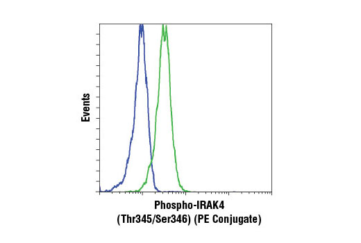 Flow cytometric analysis of KARPAS-299 cells, untreated (blue) or treated with Human Interleukin-1β (hIL-1β) #8900 (50 ng/ml, 15 min) (green), using Phospho-IRAK4 (Thr345/Ser346) (D6D7) Rabbit mAb (PE Conjugate). Cell Line Source: Dr Abraham Karpas at the University of Cambridge.