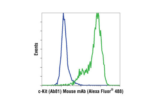 Flow cytometric analysis of Jurkat (blue) and H526 (green) cells using c-Kit (Ab81) Mouse mAb (Alexa Fluor<sup>®</sup> 488 Conjugate).