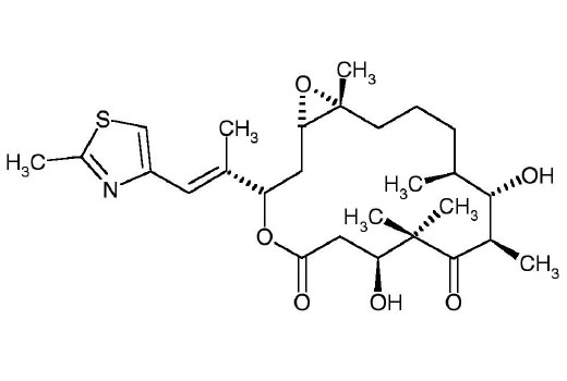 Chemical Modulators - Epothilone B - 100 µg #12986 - Signal Transduction Reagents
