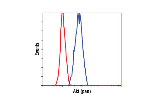 Flow cytometric analysis of Jurkat cells using Akt (pan) (C67E7) Rabbit mAb (blue) compared to a nonspecific negative control antibody (red).