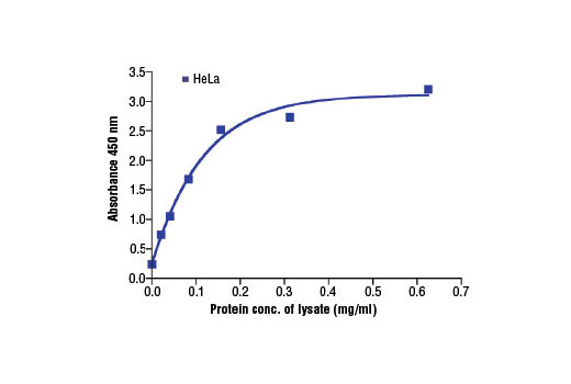 Figure 2: The relationship between protein concentration of lysates from HeLa cells and the absorbance at 450 nm is shown. HeLa cells (80% confluence) were harvested and then lysed.