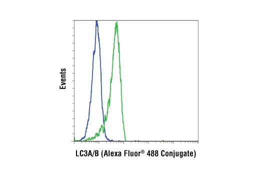 Flow cytometric analysis of HeLa cells, untreated (blue) or treated with chloroquine (50 µM, 16 hr) (green), using LC3A/B (D3U4C) XP® Rabbit mAb (Alexa Fluor® 488 Conjugate).