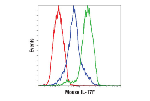 Flow cytometric analysis of mouse splenocytes, untreated (blue) or treated with PMA (50 ng/ml), Ionomycin (200 ng/ml), and hTGF-β (10 ng/ml) for 24 hr (green), using IL-17F (D3M4D) Rabbit mAb (Mouse Specific) compared to a concentration-matched Rabbit (DA1E) mAb IgG XP<sup>®</sup> Isotype Control #3900 (red). Anti-rabbit IgG (H+L), F(ab')2 Fragment (Alexa Fluor® 488 Conjugate) #4412 was used as a secondary antibody.