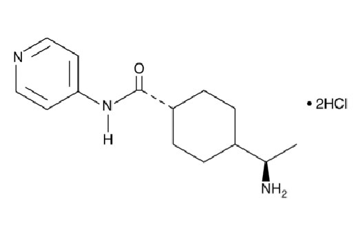 Chemical Modulators - Y-27632 - 1 mg #13624 - Related Products