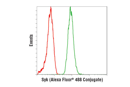 Flow cytometric analysis of RL-7 cells using Syk (D3Z1E) XP<sup>®</sup> Rabbit mAb (Alexa Fluor<sup>®</sup> 488 Conjugate) (green) compared to concentration-matched Rabbit (DA1E) mAb IgG XP<sup>®</sup> Isotype Control (Alexa Fluor<sup>®</sup> 488 Conjugate) #2975 (red).