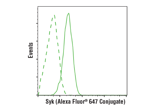 Flow cytometric analysis of RL-7 cells using Syk (D3Z1E) XP® Rabbit mAb (Alexa Fluor® 647 Conjugate) (solid line) compared to concentration-matched Rabbit (DA1E) mAb IgG XP<sup>®</sup> Isotype Control (Alexa Fluor<sup>®</sup> 647 Conjugate) #2985 (dashed line).