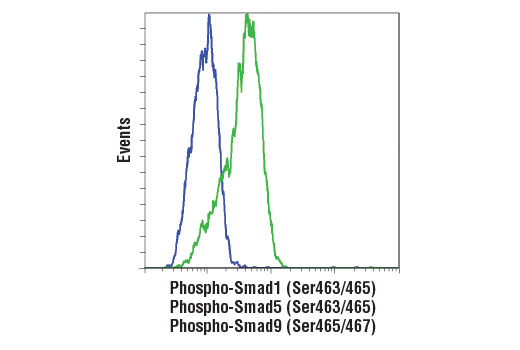 Flow cytometric analysis of HT-1080 cells, untreated (blue) or treated with Human BMP2 #4697 (green), using Phospho-Smad1 (Ser463/465)/ Smad5 (Ser463/465)/ Smad9 (Ser465/467) (D5B10) Rabbit mAb. Anti-rabbit IgG (H+L), F(ab')<sub>2</sub> Fragment (Alexa Fluor<sup>®</sup> 488 Conjugate) #4412 was used as a secondary antibody.