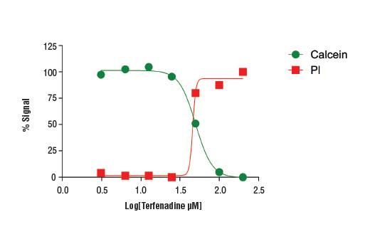 Cell Health Assay Kit - 1 Kit #13837 - Signal Transduction Reagents