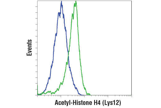 Flow cytometric analysis of HeLa cells, untreated (blue) or treated with SAHA (green) using Acetyl-Histone H4 (Lys12) (D2W6O) Rabbit mAb. Anti-rabbit IgG (H+L), F(ab')2 fragment (Alexa Fluor<sup>®</sup> 488 Conjugate) #4412 was used as secondary antibody.