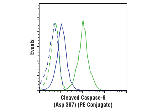 Flow Cytometry Image 1: Cleaved Caspase-8 (Asp387) (D5B2) XP® Rabbit mAb (Mouse Specific) (PE Conjugate)