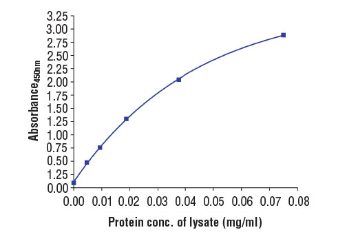 Figure 2. The relationship between protein concentration of lysates from LNCaP cells and the absorbance at 450 nm as detected by the PathScan<sup>®</sup> Total PSA/KLK3 Sandwich ELISA Kit is shown. LNCaP cells (85% confluence) were harvested and lysed.