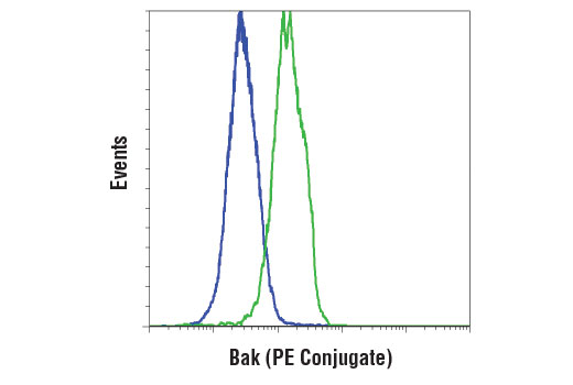 Flow cytometric analysis of HeLa cells (blue) and SK-BR-3 cells (green) using Bak (D4E4) Rabbit mAb (PE Conjugate).