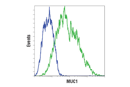 Flow cytometric analysis of HCT 116 (blue) and ZR-75-1 (green) using MUC1 (D9O8K) XP<sup>®</sup> Rabbit mAb. Anti-rabbit IgG (H+L), F(ab')<sub>2</sub> Fragment (Alexa Fluor<sup>®</sup> 488 Conjugate) #4412 was used as a secondary antibody.