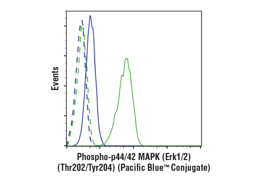 Flow cytometric analysis of Jurkat cells, treated with U0126 #9903 (10 μM, 2 hr; blue) or treated with TPA (12-O-Tetradecanoylphorbol-13-Acetate) #4174 (200 μM, 30 min; green), using Phospho-p44/42 MAPK (Erk1/2) (Thr202/Tyr204) (197G2) Rabbit mAb (Pacific Blue™ Conjugate) (solid line) or concentration-matched Rabbit (DA1E) mAb IgG XP® Isotype Control (Pacific Blue™ Conjugate) #9078 (dashed line).