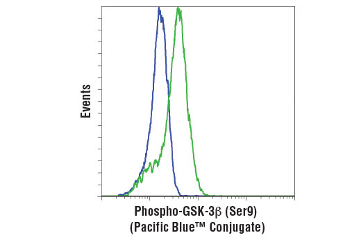 Flow cytometric analysis of PC-3 cells, untreated (green) or treated with LY294002 #9901 and Wortmannin #9951 (blue), using Phospho-GSK-3β (Ser9) (D85E12) XP<sup>®</sup> Rabbit mAb (Pacific Blue<sup>™ </sup>Conjugate).