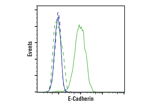Flow Cytometry Image 1: E-Cadherin (4A2) Mouse mAb