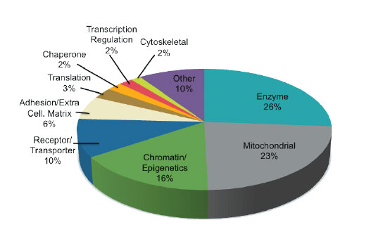 The chart shows the relative category distribution of proteins with acetylated lysine residues derived from peptides identified from an AcetylScan<sup>®</sup> LC-MS/MS experiment of mouse liver tissue using PTMScan<sup>®</sup> Acetyl-Lysine Motif [Ac-K] Immunoaffinity Beads.
