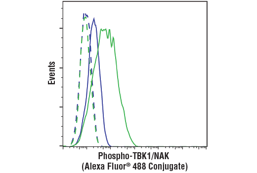 Flow cytometric analysis of THP-1 cells differentiated with TPA (200nM, 4 days) #9905, untreated (blue) or LPS-treated (1 ug/mL, 1 Hr) (green), using Phospho-TBK1/NAK (Ser172) (D52C2) XP<sup>®</sup> Rabbit mAb (Alexa Fluor<sup>®</sup> 488 Conjugate) (solid lines) or a concentration-matched Rabbit (DA1E) mAb IgG XP<sup>®</sup> Isotype Control (Alexa Fluor<sup>®</sup> 488 Conjugate) #2975 (dashed lines).