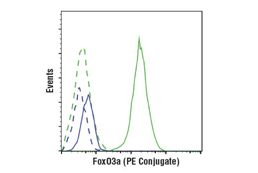 Monoclonal Antibody Flow Cytometry Antral Ovarian Follicle Growth