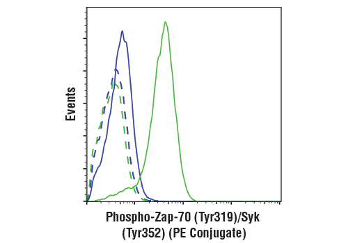 Monoclonal Antibody Flow Cytometry Regulation of Peptidyl-Tyrosine Phosphorylation