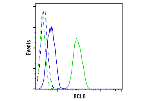 Flow Cytometry Image 1: BCL6 (D4I2V) XP® Rabbit mAb