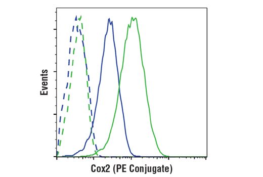 Flow cytometric analysis of Raw264.7 cells, untreated (blue) or treated with LPS (1 ug/ml, ON; green) using Cox2 (D5H5) XP®Rabbit mAb(PEConjugate) (solid lines) or concentration-matched Rabbit (DA1E) mAb IgG XP<sup>®</sup> Isotype Control (PE Conjugate) #5742 (dashed lines).