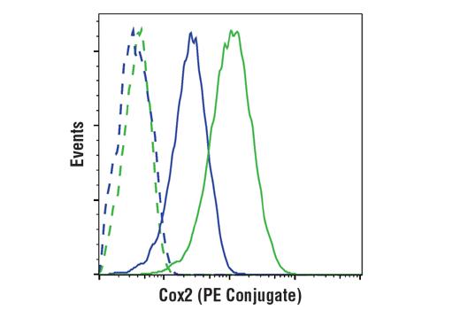 Monoclonal Antibody - Cox2 (D5H5) XP®Rabbit mAb(PEConjugate), UniProt ID P35354, Entrez ID 5743 #13314 - #13314