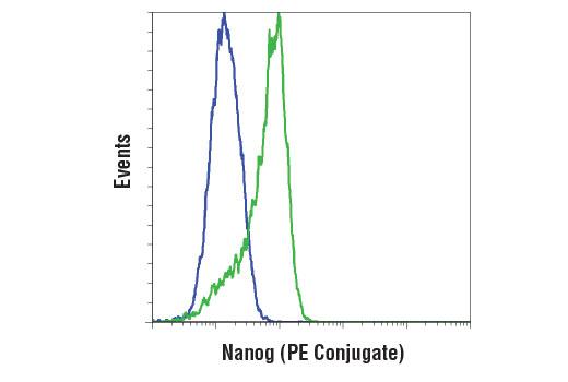 Monoclonal Antibody - Nanog (D73G4) XP®Rabbit mAb(PE Conjugate), UniProt ID Q9H9S0, Entrez ID 79923 #14955 - Developmental Biology