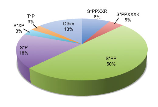 This chart shows the underlying motif distribution in a PhosphoScan<sup>®</sup> LC-MS/MS experiment using 750 nonredundant tryptic peptides generated from mitotic HeLa cells. HeLa cells were treated with thymidine (2 mM, 18 hr) followed by Nocodazole #2190 (60 nM, 24 hr) and immunoprecipitated using PTMScan<sup>®</sup> Phospho-Ser-Pro-Pro Motif [pSPP] Immunoaffinity Beads.