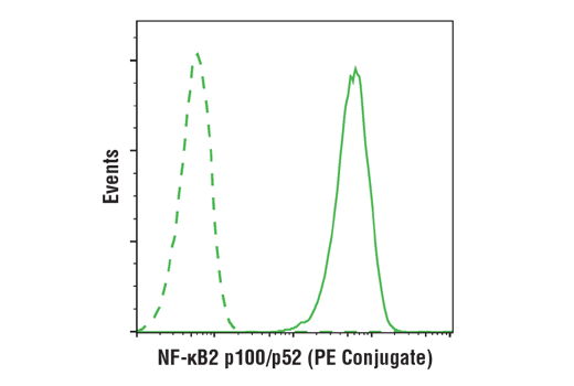 Monoclonal Antibody - NF-κB2 p100/p52 (18D10) Rabbit mAb (PE Conjugate), UniProt ID Q00653, Entrez ID 4791 #15003, Flow Cytometry