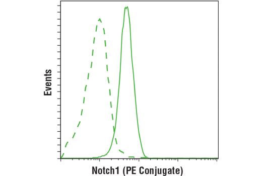 Monoclonal Antibody - Notch1 (D6F11) XP® Rabbit mAb (PE Conjugate), UniProt ID P46531, Entrez ID 4851 #15004, Notch