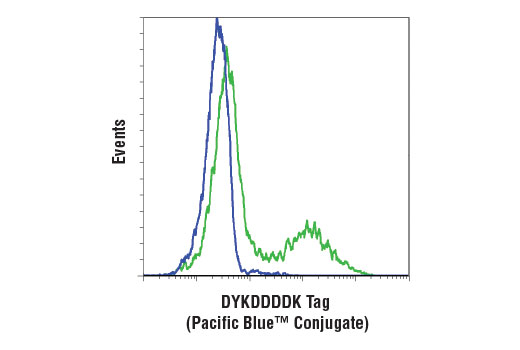 Monoclonal Antibody - DYKDDDDK Tag (D6W5B) Rabbit mAb (Binds to same epitope as Sigma's Anti-FLAG® M2 Antibody) (Pacific Blue™ Conjugate) - 100 µl #15010, Flag