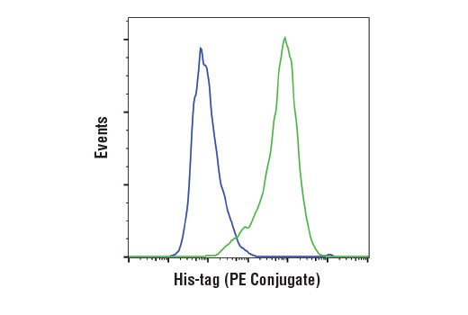 Monoclonal Antibody - His-Tag (D3I1O) XP® Rabbit mAb (PE Conjugate) - 100 µl #15024, Companion Products
