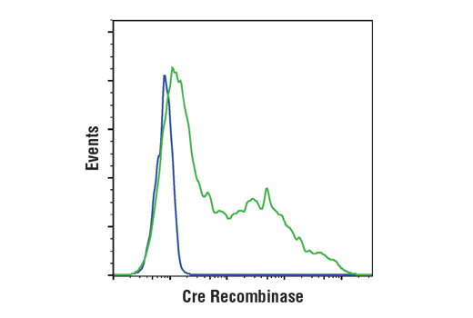 Flow Cytometry Image 1: Cre Recombinase (D7L7L) XP® Rabbit mAb