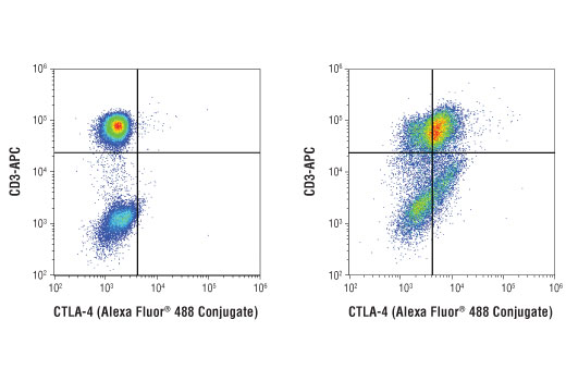 Flow cytometric analysis of human peripheral blood mononuclear cells, untreated (left) or PHA-treated (1 µg/ml, 72 hr; right), using CTLA-4 (D4E9I) Rabbit mAb (Alexa Fluor<sup>®</sup> 488 Conjugate) and co-stained with a CD3 antibody. Analysis was performed on cells in the lymphocyte gate.