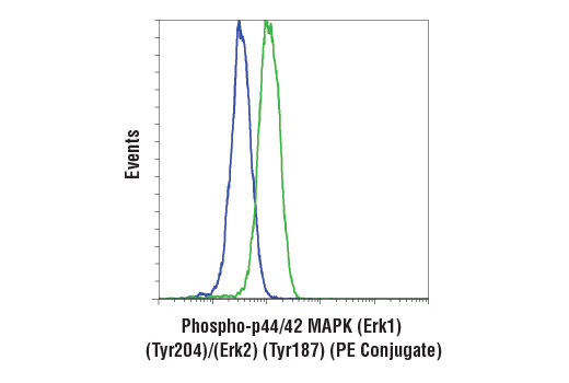 Monoclonal Antibody Flow Cytometry erk2