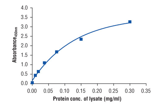 Figure 2. The relationship between protein concentration of lysates from MCF7 cells and the absorbance at 450 nm as detected by the PathScan<sup>®</sup> Total Estrogen Receptor α Sandwich ELISA Kit #80251 is shown. MCF7 cells (85% confluence) were harvested and then lysed.