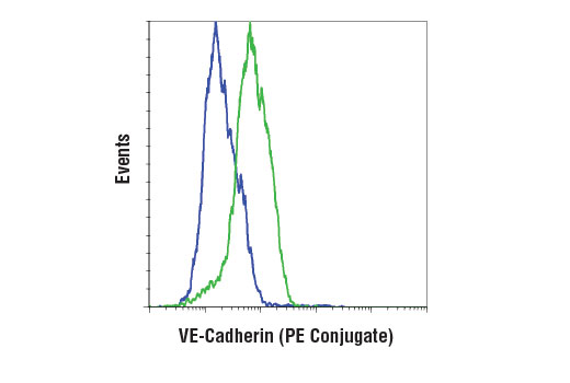 Flow Cytometry Image 1: VE-Cadherin (D87F2) XP® Rabbit mAb (PE Conjugate)