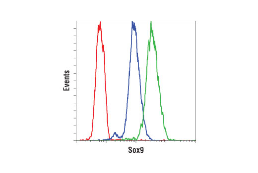 Flow Cytometry - Sox9 (D8G8H) Rabbit mAb