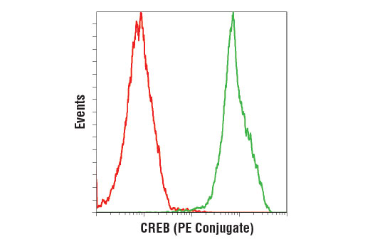 Flow cytometric analysis of SK-N-MC cells using CREB (48H2) Rabbit mAb (PE Conjugate) (green) compared to Rabbit (DA1E) mAb IgG XP<sup>®</sup> Isotype Control (PE Conjugate) #5742 (red).