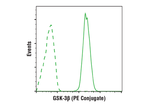 Monoclonal Antibody Flow Cytometry Beta-Catenin Binding - count 20