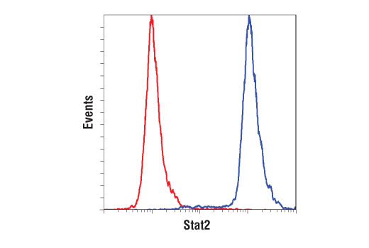 Flow cytometric analysis of U266 cells using Stat2 (D9J7L) Rabbit mAb (blue) compared to concentration-matched Rabbit (DA1E) mAb IgG XP<sup>®</sup> Isotype Control #3900 (red). Anti-rabbit IgG (H+L), F(ab')<sub>2</sub> Fragment (Alexa Fluor 647 Conjugate) was used as a secondary antibody.