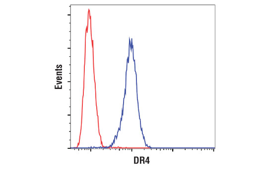 Flow cytometric analysis of U266 cells using DR4 (D9S1R) Rabbit mAb (blue) compared to concentration-matched Rabbit (DA1E) mAb IgG XP<sup>®</sup> Isotype control #3900 (red). Anti-rabbit IgG (H+L), F(ab')<sub>2</sub> Fragment (Alexa Fluor<sup>®</sup> 488 Conjugate) #4412 was used as a secondary antibody.