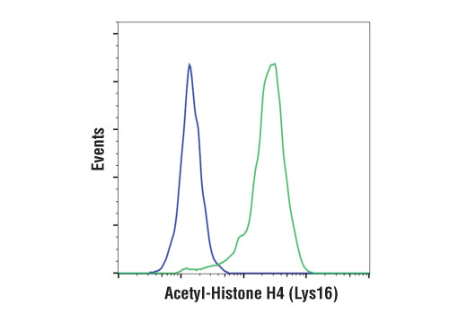 Flow cytometric analysis of HeLa cells, untreated (blue) or treated with Trichostatin A (TSA) #9950 (1 uM, Overnight; green) using Acetyl-Histone H4 (Lys16) (E2B8W) Rabbit mAb. Anti-rabbit IgG (H+L), F(ab')<sub>2</sub> Fragment (Alexa Fluor<sup>®</sup> 488 Conjugate) #4412 was used as a secondary antibody.