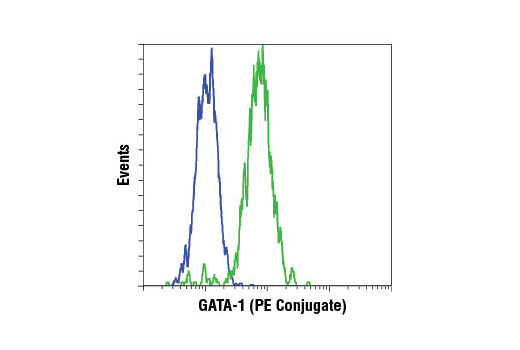 Flow Cytometry Image 1: GATA-1 (D52H6) XP® Rabbit mAb (PE Conjugate)